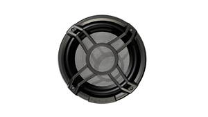"NEW - Roswell Elite 10"" Sub with Enclosure"